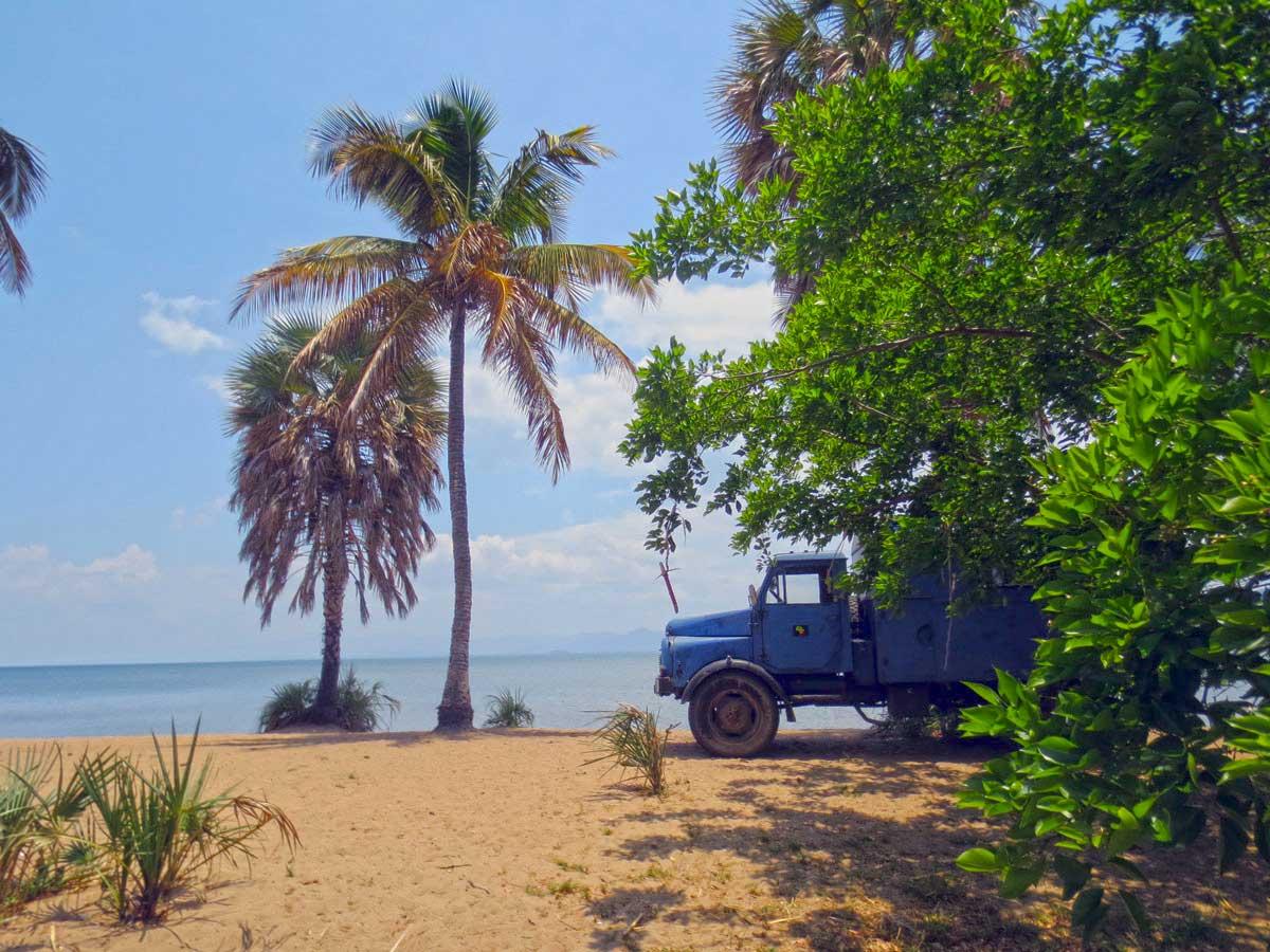 Unter Palmen am Malawisee