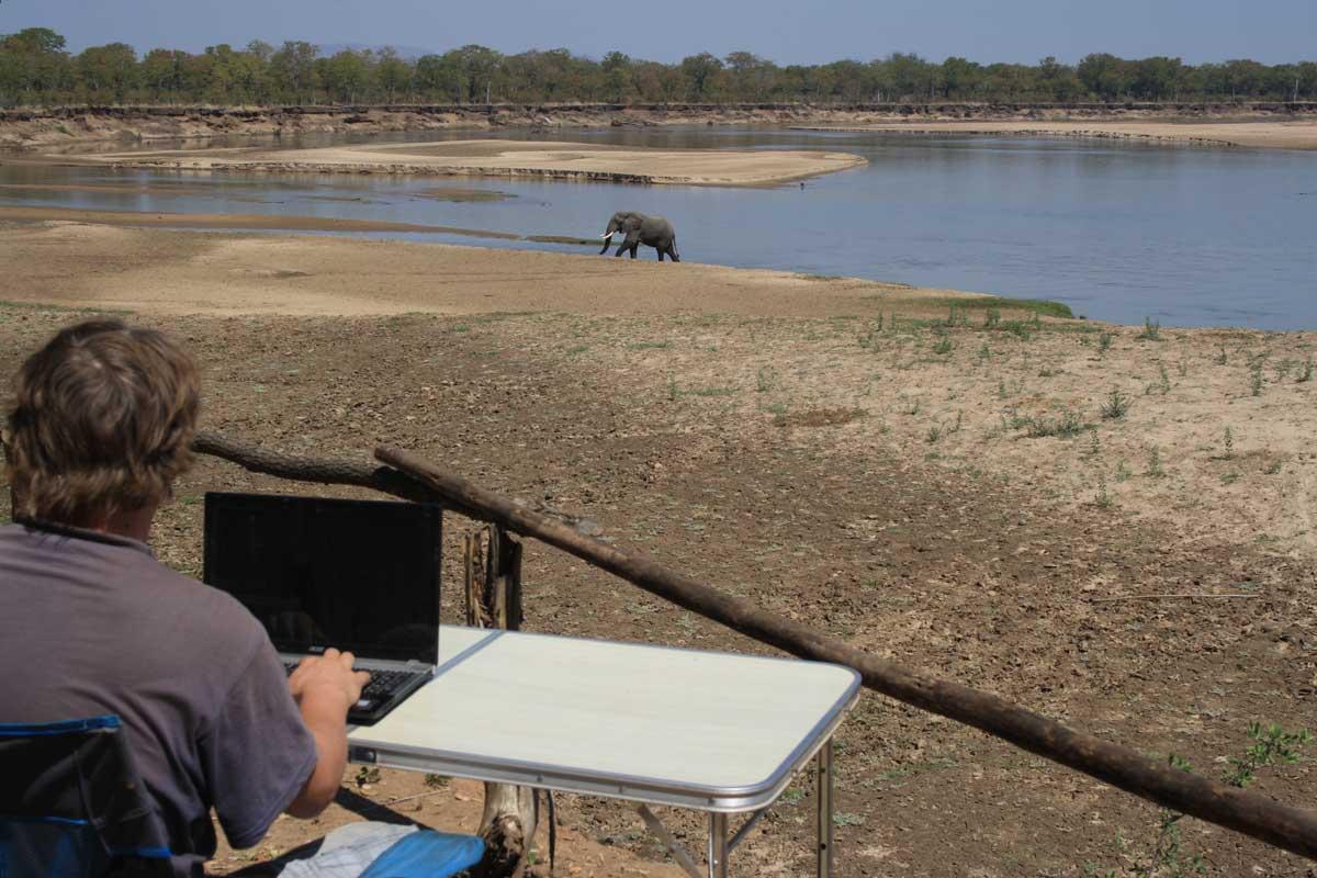 Arbeiten als digitaler Nomade mit Blick in den South Luangwa Nationalpark in Sambia