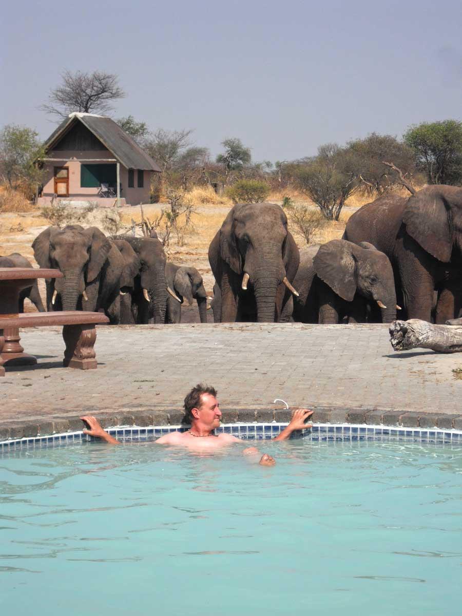 Swimming Pool, Elephant Sands, Botswana